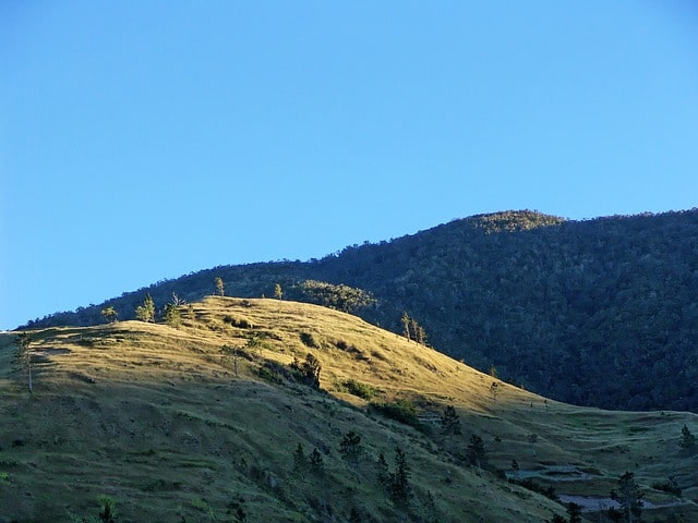 John Crow Mountains