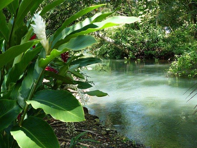 flod ved port antonio jamaica