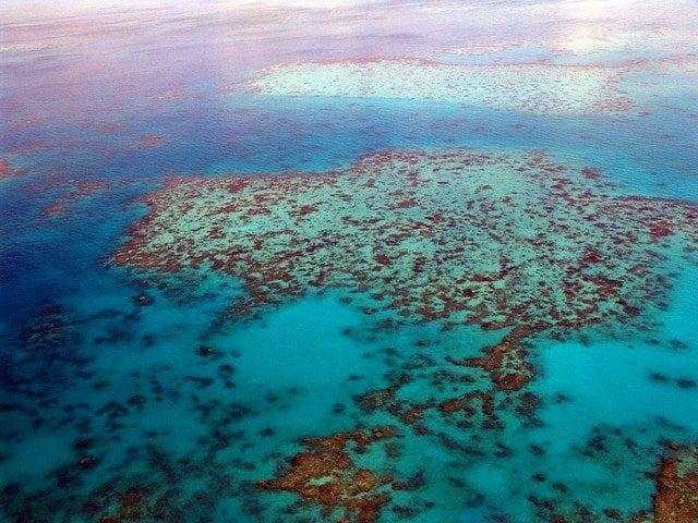 Great Barrier Reef australien sevaerdigheder