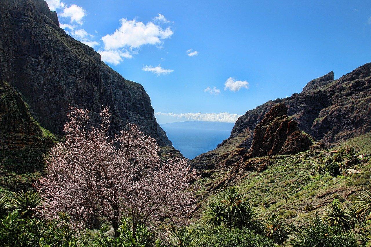Vandretur i Masca-dalen Tenerife seværdigheder