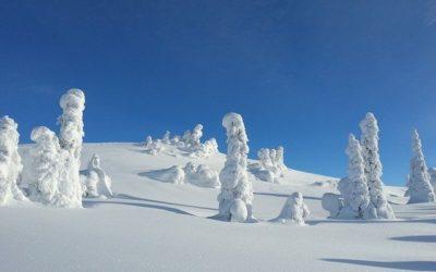 Info om skirejser til Kvitfjell